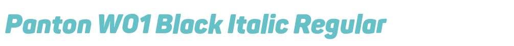 Panton W01 Black Italic