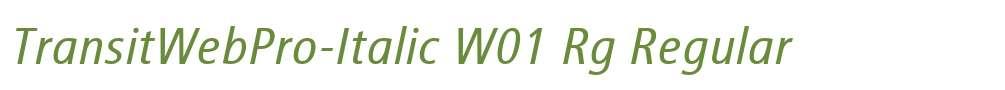 TransitWebPro-Italic W01 Rg