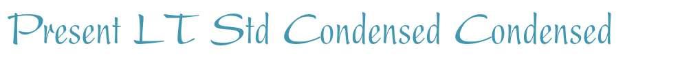 Present LT Std Condensed