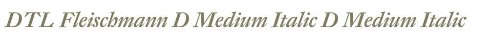 DTL Fleischmann D Medium Italic