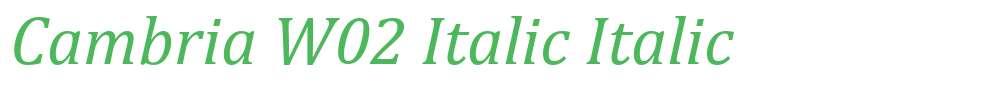 Cambria W02 Italic