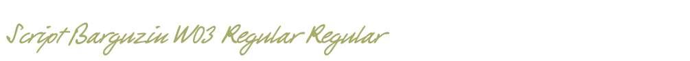 Script Barguzin W03 Regular