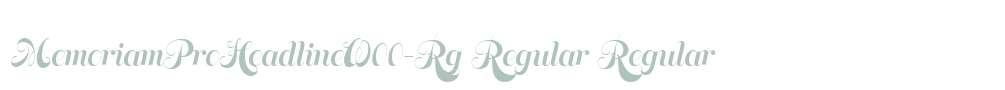 MemoriamProHeadlineW00-Rg Regular