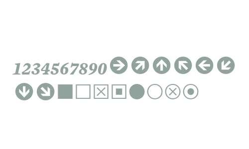 Mercury Numeric G1 Bold Italic