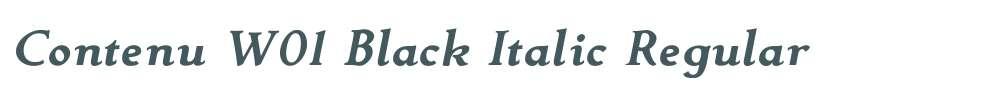 Contenu W01 Black Italic