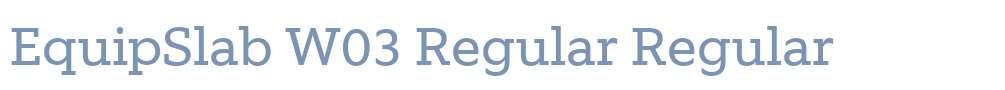 EquipSlab W03 Regular