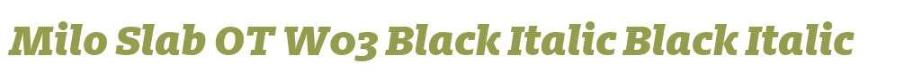 Milo Slab OT W03 Black Italic