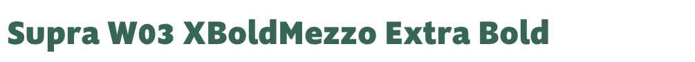 Supra W03 XBoldMezzo