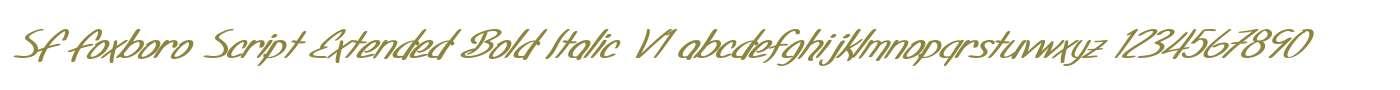 SF Foxboro Script Extended Bold Italic V1
