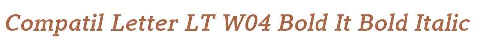 Compatil Letter LT W04 Bold It
