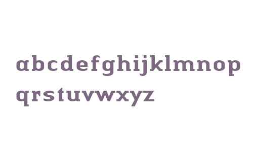 Authentic Serif W04 Medium