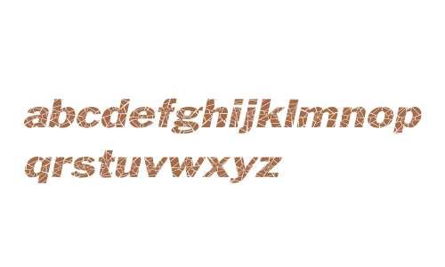 Philadelphia Cracked-Extended Italic