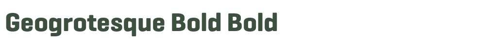 Geogrotesque Bold