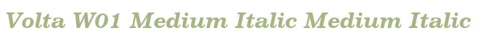 Volta W01 Medium Italic