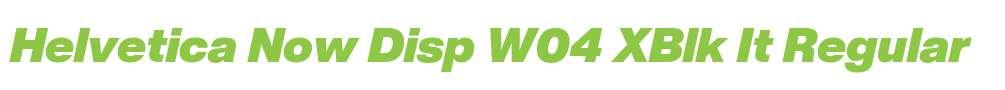 Helvetica Now Disp W04 XBlk It