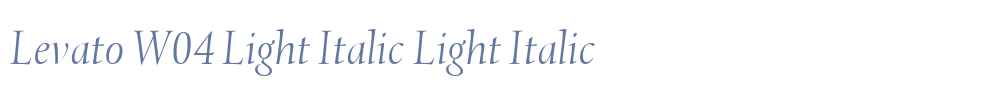 Levato W04 Light Italic