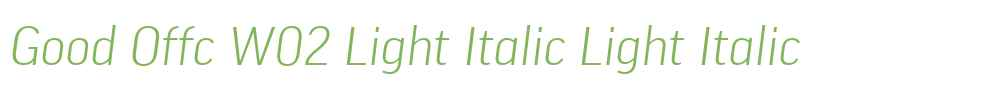 Good Offc W02 Light Italic