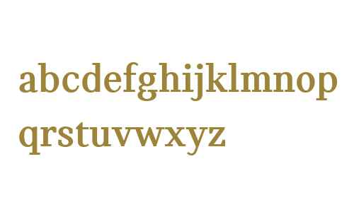 MINI Serif Bold