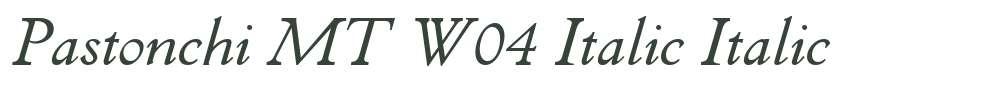 Pastonchi MT W04 Italic