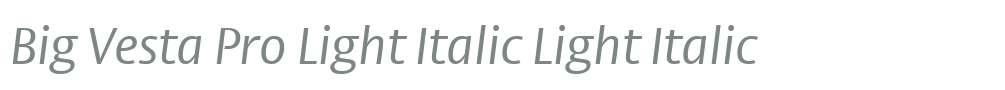 Big Vesta Pro Light Italic