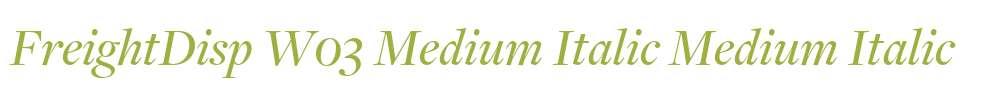 FreightDisp W03 Medium Italic