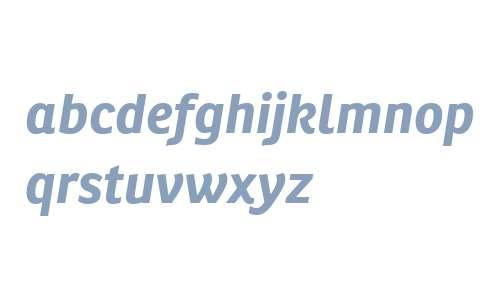 Ronnia W02 Bold Italic
