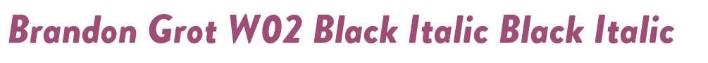 Brandon Grot W02 Black Italic