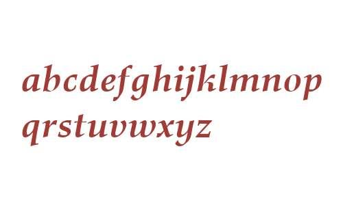 Richler W01 Bold Italic