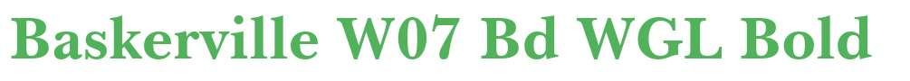 Baskerville W07 Bd