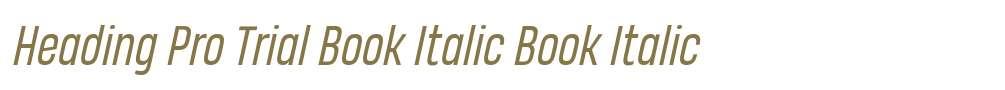 Heading Pro Trial Book Italic