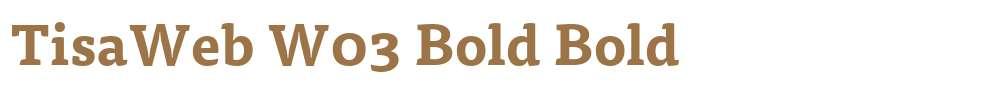 TisaWeb W03 Bold