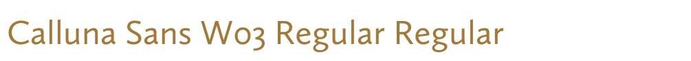 Calluna Sans W03 Regular
