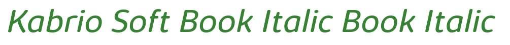 Kabrio Soft Book Italic