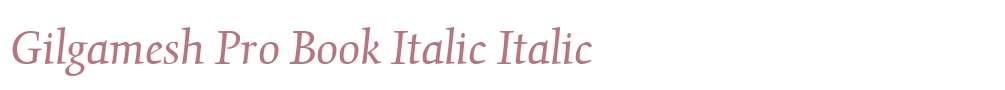 Gilgamesh Pro Book Italic