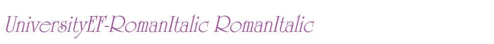 UniversityEF-RomanItalic