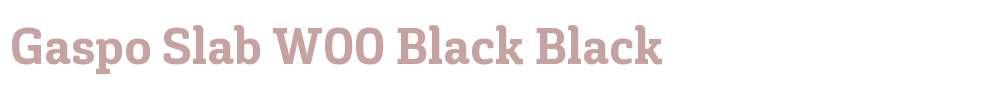 Gaspo Slab W00 Black