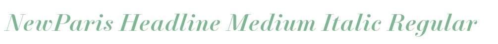 NewParis Headline Medium Italic
