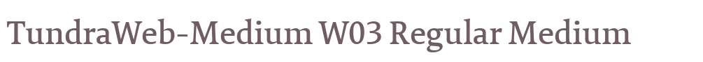 TundraWeb-Medium W03 Regular