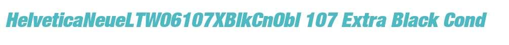 HelveticaNeueLTW06107XBlkCnObl