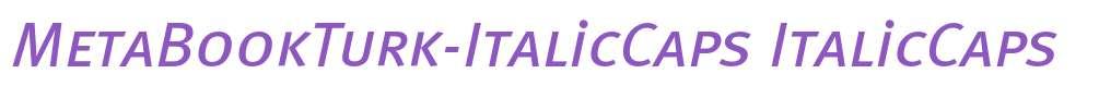 MetaBookTurk-ItalicCaps
