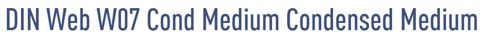 DIN Web W07 Cond Medium