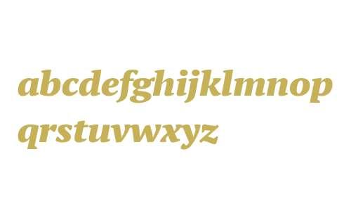 PT Serif Pro ExtBlackItalicW08