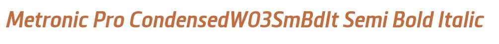 Metronic Pro CondensedW03SmBdIt