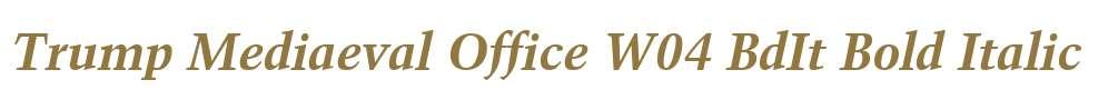 Trump Mediaeval Office W04 BdIt