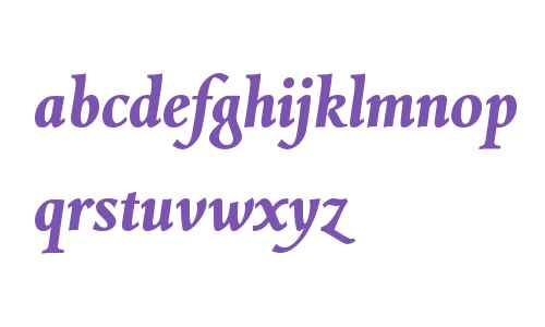 Combi Italic W01 Bold