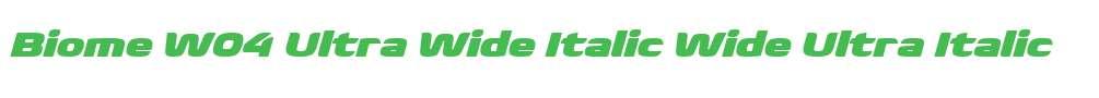 Biome W04 Ultra Wide Italic