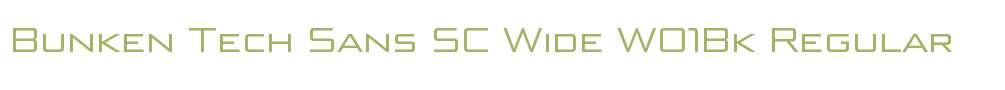 Bunken Tech Sans SC Wide W01Bk