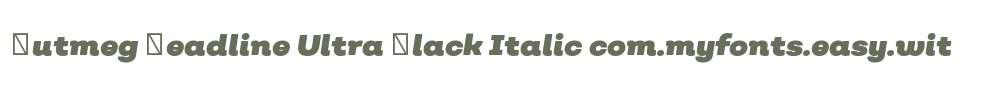 Nutmeg Headline Ultra Black Italic