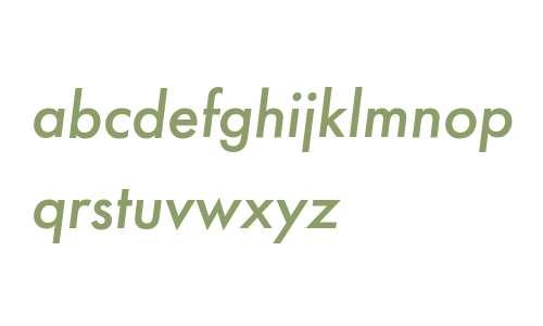 Futura PT Medium Italic W08 Rg