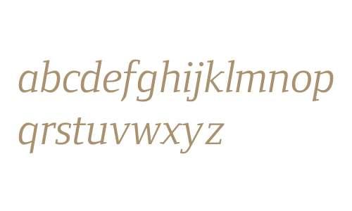 Fndry Form Serif W04 Bk It